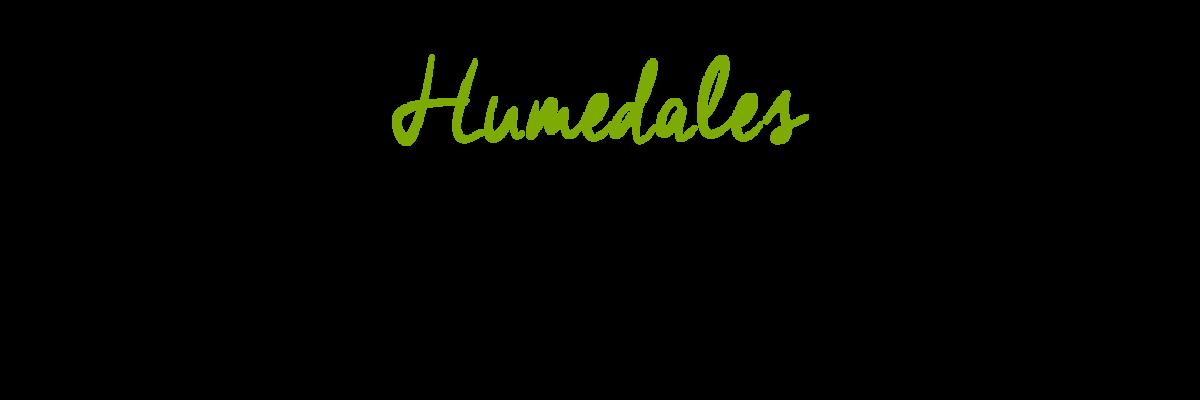 Humedales: un encuentro de diversas miradas